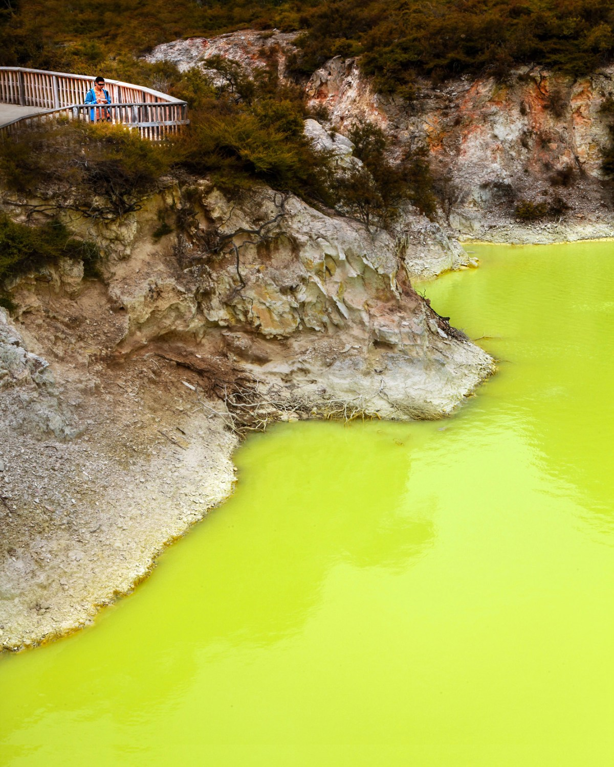 Nomadic Fare in Wai-O-Tapu Thermal Wonderland, New Zealand