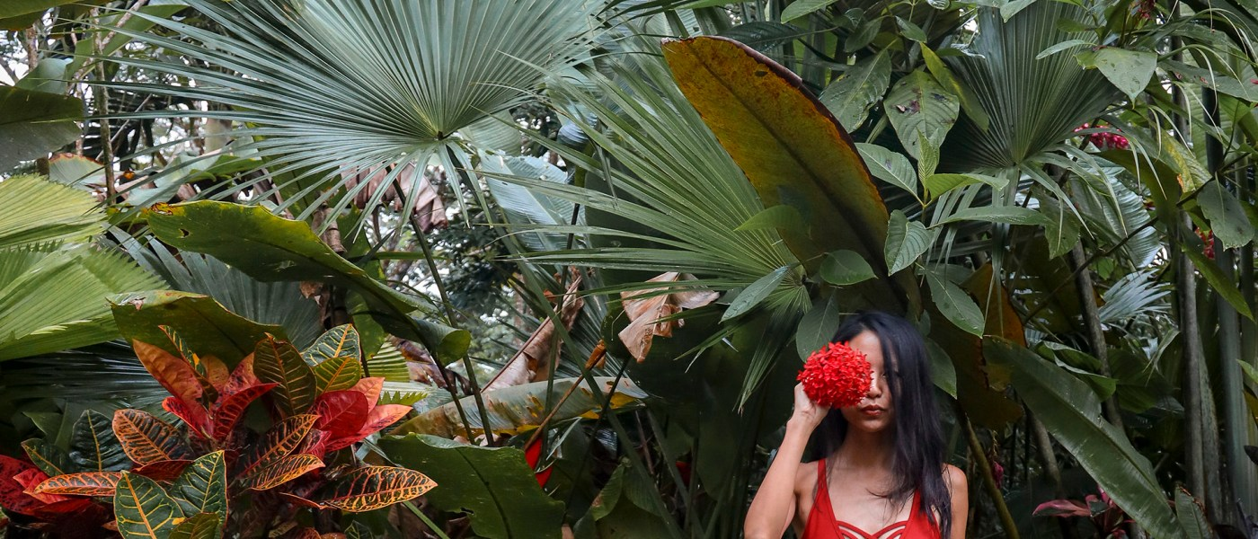 Nomadic Fare in jungle in Costa Rica
