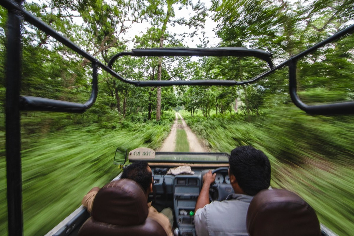 On safari with Barahi Jungle Lodge