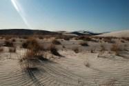 White Sands 4