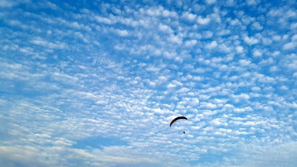 Paragliding Workshop