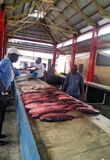 Selwyn-Clarke Market, Victoria Seychelles