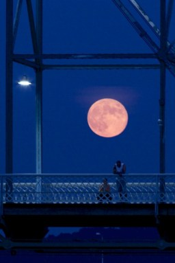 Harvest moonrise--just a minute too late