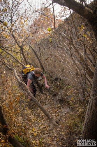 A hiker climbs through the woods along what is left of the Great Wall of China.