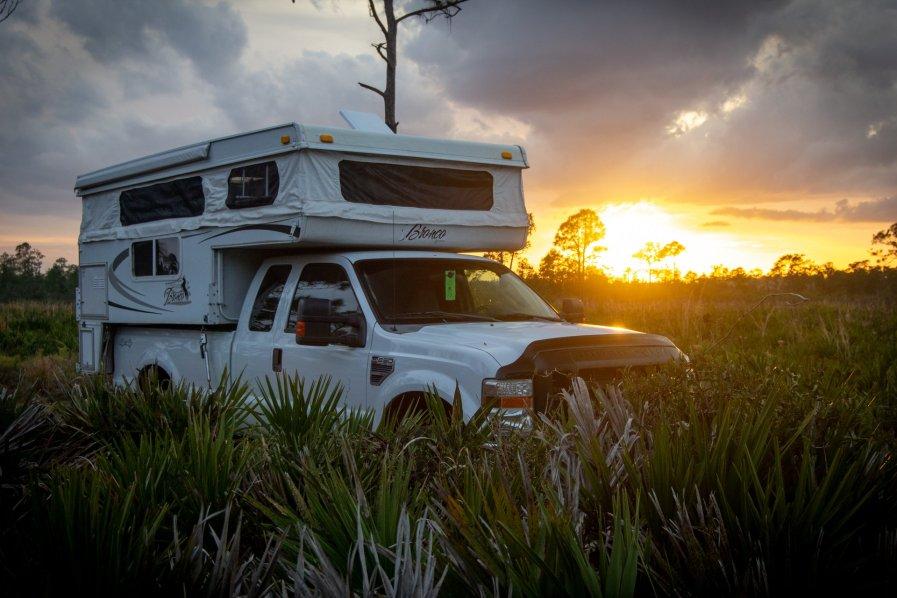 Highlands Hammock Wilderness Campsite