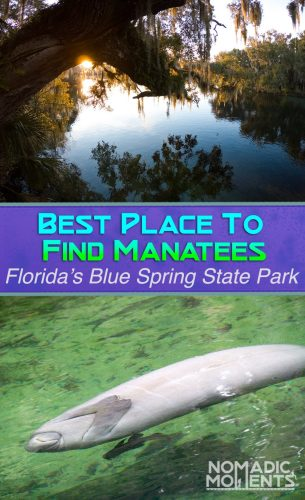 Best Place to Find Manatees