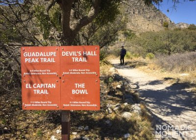 Guadalupe Peak Trails