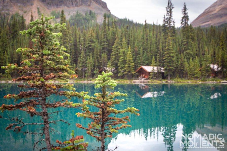 Lake O'Hara Lakeside Cabins