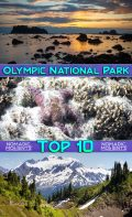 Visiting Olympic National Park Top 10