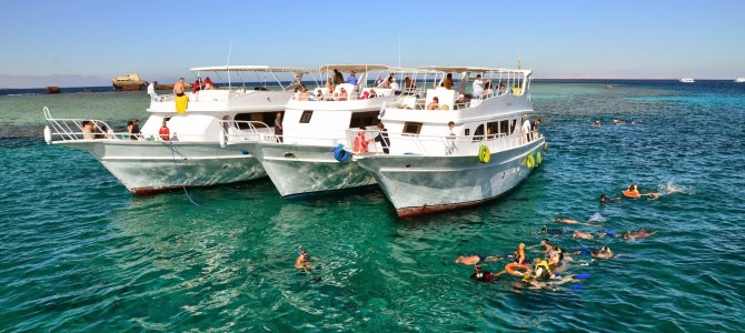 Tiran Island Snorkeling Trip