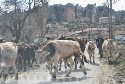 Traffic jam at Yazılıkaya in the Phrygian Valley, Turkey
