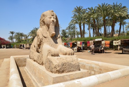 Sphinx in Memphis, Egypt