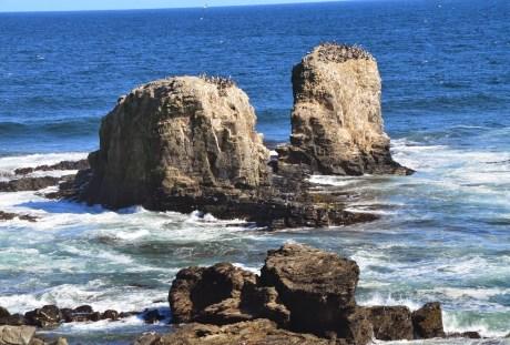 Punta de Lobos in Pichilemu, Chile