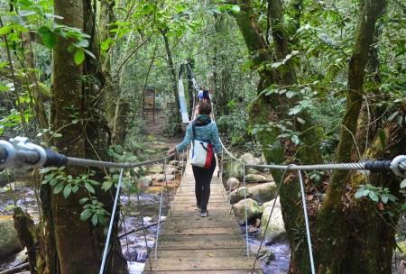 Hiking to Cachoeira do Gato on the Jeep tour on Ilhabela, Brazil