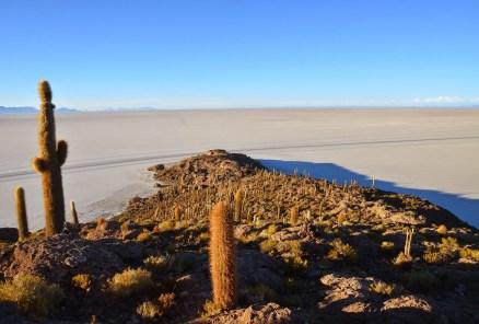 Incahuasi at Salar de Uyuni, Bolivia