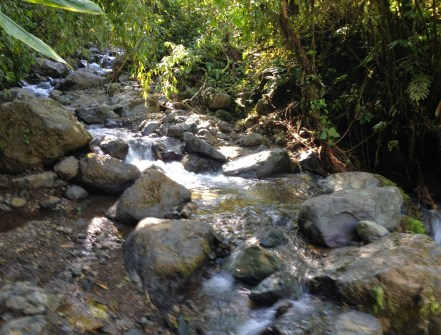 A stream at Parque Municipal Natural Santa Emilia, Belén de Umbría, Risaralda, Colombia