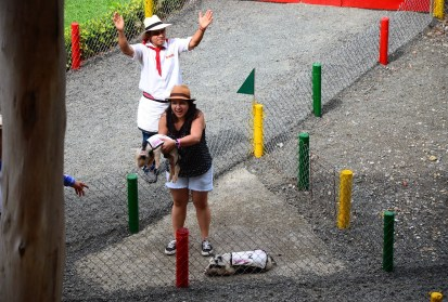 Juégatela en el Cerdódromo at Panaca in Colombia