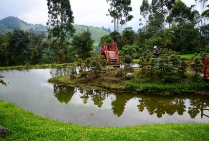 Bonsai Garden at Recinto del Pensamiento in Manizales, Caldas, Colombia