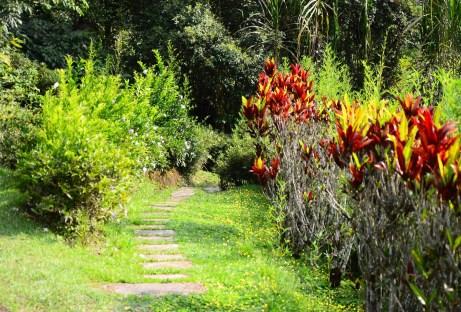 Jardín Botánico San Jorge in Ibagué, Tolima, Colombia