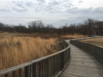 Boardwalk at Coffee Creek Watershed Preserve in Chesterton, Indiana