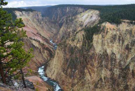 Grand View at Grand Canyon of the Yellowstone in Yellowstone National Park, Wyoming
