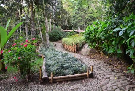 Botanical Garden at Jericó Antioquia Colombia