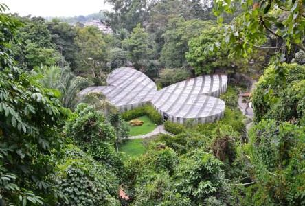 Mariposario at Quindío Botanical Garden