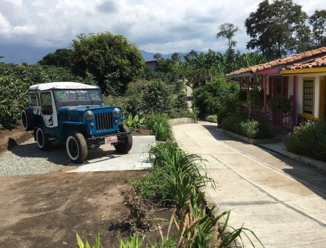 Recuca coffee picking area