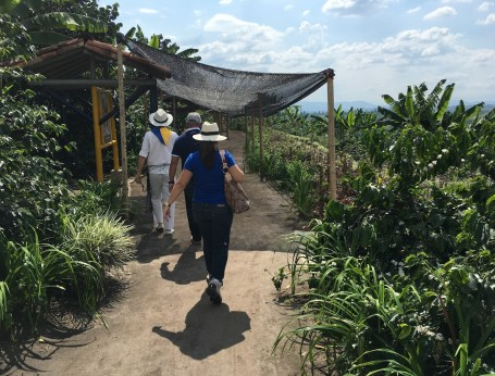 Recuca coffee education trail