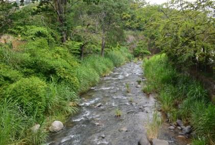 Río Cali at Zoológico de Cali in Colombia