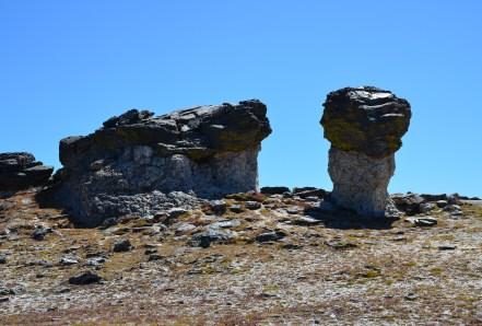 Mushroom Rocks on the Tundra Communities trail on Trail Ridge Road in Rocky Mountain National Park, Colorado