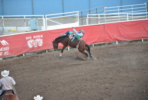 Bronc riding at Stampede Park in Cody, Wyoming