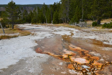Goggles Spring flow on Geyser Hill at the Upper Geyser Basin in Yellowstone National Park, Wyoming