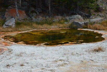 East Economic Geyser at the Upper Geyser Basin in Yellowstone National Park, Wyoming