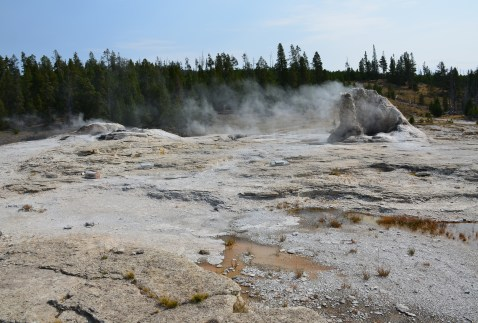 Catfish, Mastiff, and Bijou Geysers next to Giant Geyser at the Upper Geyser Basin in Yellowstone National Park, Wyoming