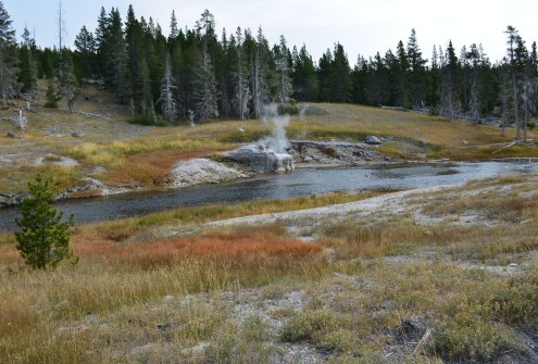 Riverside Geyser at the Upper Geyser Basin in Yellowstone National Park, Wyoming