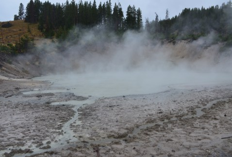 Mud Caldron at Mud Volcano Area in Yellowstone National Park, Wyoming