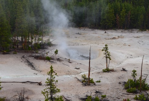 Mudpot at Sulphur Caldron in Yellowstone National Park, Wyoming