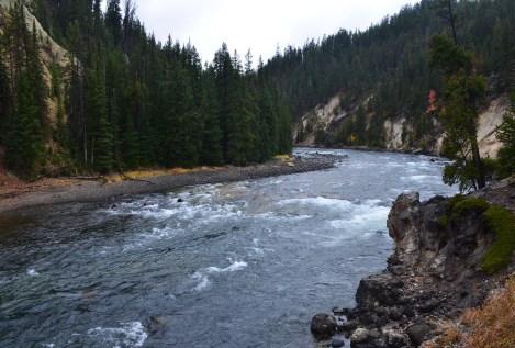 Yellowstone River at Brink of Lower Falls at Grand Canyon of the Yellowstone in Yellowstone National Park, Wyoming