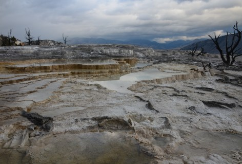 Main Terrace at Mammoth Hot Springs in Yellowstone National Park, Wyoming