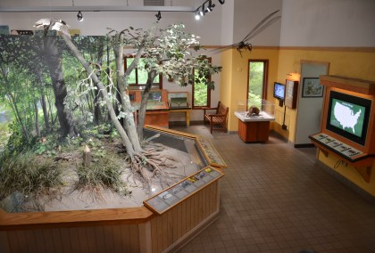 Nature Center at Indiana Dunes State Park