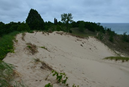 Trail #9 at Indiana Dunes State Park