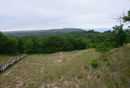 Mt. Tom on Trail #8 at Indiana Dunes State Park