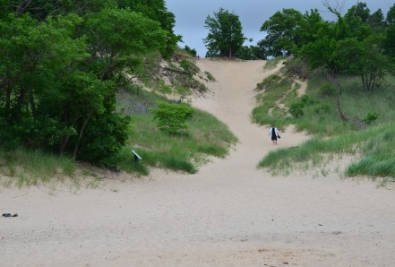 Devil's Slide at Indiana Dunes State Park