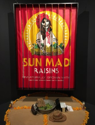 Sun-Mad by Ester Hernández at National Museum of Mexican Art in Pilsen, Chicago, Illinois