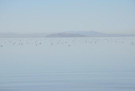 Bridger Bay at Antelope Island State Park in Utah