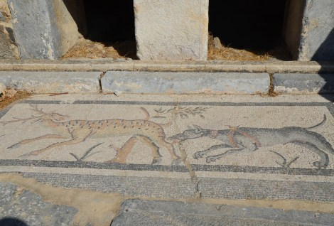 Mosaic at the Roman tombs in Bodrum, Turkey