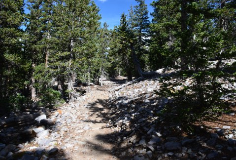Alpine Lakes Loop Trail at Great Basin National Park, Nevada