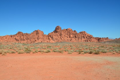 View from Lone Rock at Valley of Fire State Park in Nevada