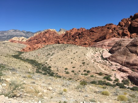 Calico I at Red Rock Canyon National Conservation Area in Nevada